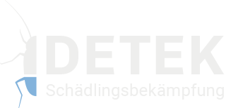 DETEK Schädlingsbekämpfung, Tim Rietkötter, Geschäftsführer